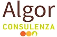 Algor Consulente aziendale